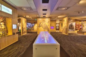 Grammy Museum Gallery room