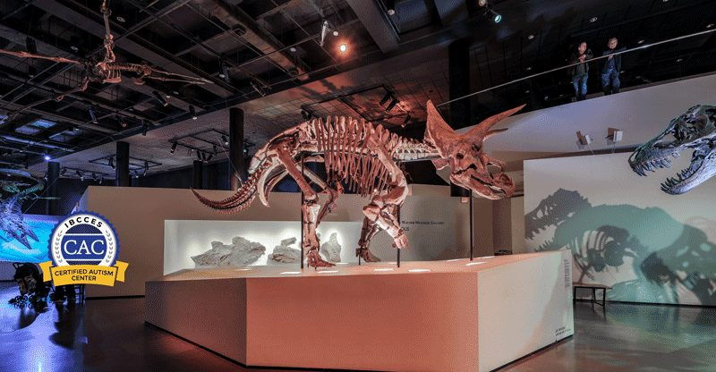 HMNS Paleo Hall with CAC badge