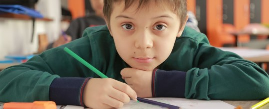 boy student at his desk