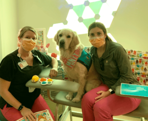 Dayton Children's Hospital offers sensory room plus service dog